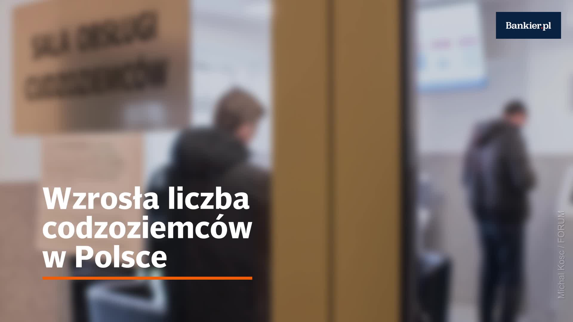 Wzrosła liczba codzoziemców w Polsce